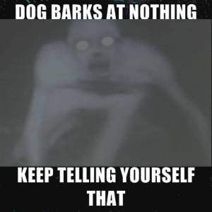 dogs barking